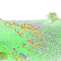 62. Classification results visualized in a 3D LiDAR point cloud (detail from Fig. 4a2)