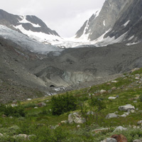 "22. ""Source"" and ""sink"" habitats at Langgletscher, Lötschental (Photo-copyright: Normand-Treier)"